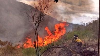 Photo of #FogoNaChapada: Andaraí volta a sofrer com incêndio; brigadistas seguem para combate