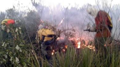 Photo of Fogo na Chapada: Incêndio entre Igatu e Mucugê é controlado por brigadistas que evitam catástrofe