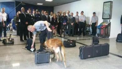 Photo of Ministro da Justiça aprova condições de segurança no aeroporto de Salvador