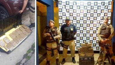 Photo of Bahia: Droga transportada em caminhão é apreendida pela PRF e Rondesp em Feira de Santana