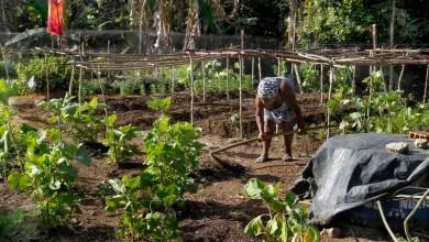 Photo of Governo retoma negociação com o Incra e assegura R$ 5 mi para assentamentos na Bahia