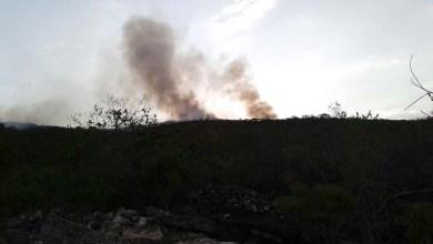 Photo of Chapada: Incêndio em Andaraí é controlado; brigadistas iniciam fase de extinção e monitoramento