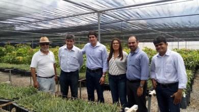 Photo of Chapada: Expansão da agroindústria é a aposta da Desenbahia para o desenvolvimento da região