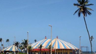 Photo of Circo Picolino inaugura nova lona com espetáculos e exposição em Salvador