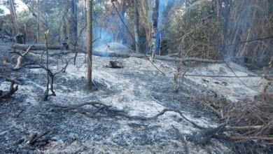 Photo of Chapada: Visitantes são alertados para o maior período de queimadas na região