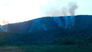 Photo of Chapada: Brigadistas atuam no combate a incêndio de grandes proporções em Jacobina