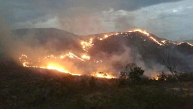 Photo of Chapada: Incêndio na APA do Barbado continua mesmo com esforços de brigadistas; confira vídeo