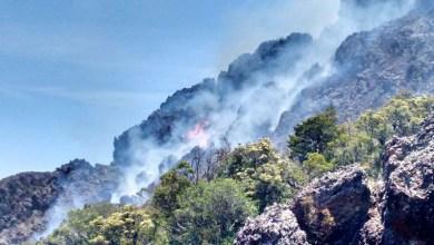 Photo of #FogoNaChapada: Focos de incêndio consomem área extensa em Rio de Contas