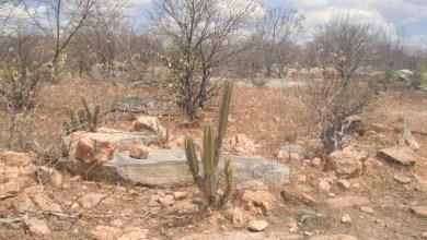 Photo of #Bahia: Seca no estado põe empresa de distribuição de água em alerta