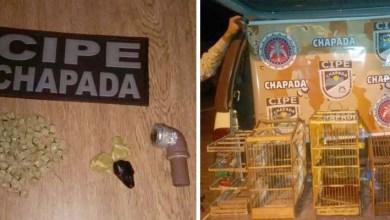 Photo of Utinga: Cipe-Chapada prende traficante com 57 pedras de crack no município