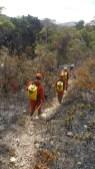 Fogo na região do Pico do Barbado - FOTO Corpo de Bombeiros - PMBA 5