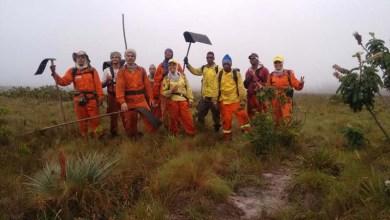 Photo of Chapada: Brigadistas debelam fogo em área do Parque Nacional; novo foco é identificado em Ituaçu