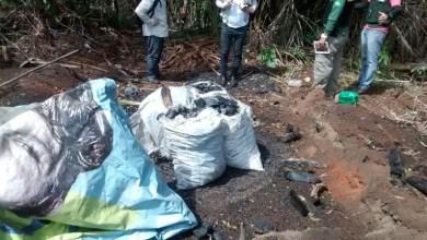 Photo of #Camaçari: Inema e Ibama realizam operação em combate ao desmatamento ilegal