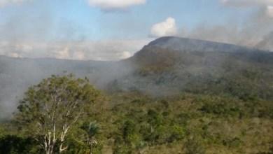 Photo of Chapada: Fogo no município de Ituaçu é controlado após ação de brigadistas