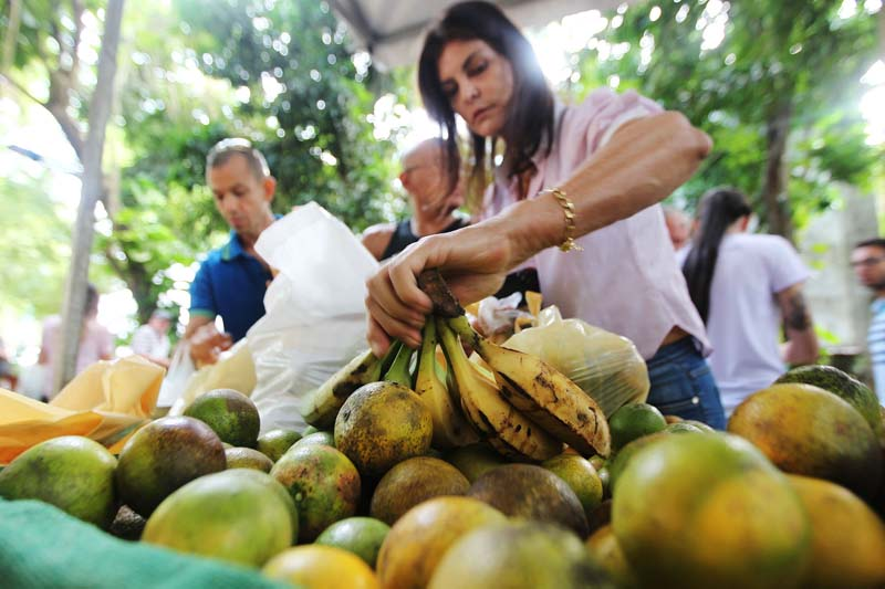 Chapada: Itaetê recebe Feira Agroecológica pela segunda vez; projeto leva alimento saudável para os cidadãos