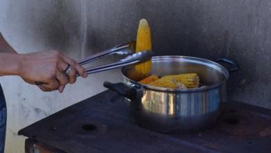 Photo of Festas juninas na Bahia têm o sabor da agricultura familiar; SDR investe em comunidades rurais