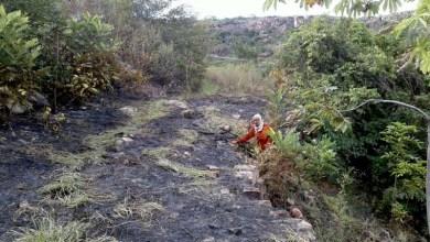 Photo of Chapada: Incêndio florestal é debelado por brigadistas voluntários em Andaraí