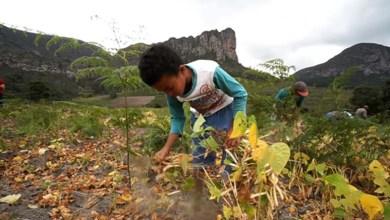 Photo of Chapada: Programa de TV 'Dendê na Mochila' revela os segredos e encantos da vida em Mucugê