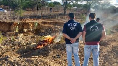 Photo of #Bahia: Delegacia de Tóxicos e Entorpecentes de Irecê incinera 22 quilos de drogas apreendidos