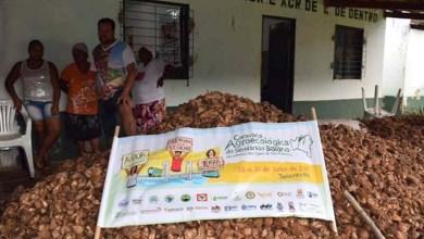 Photo of Chapada: Jacobina e Caém recebem Caravana Agroecológica do Semiárido Baiano
