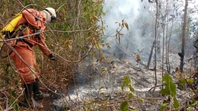 Photo of Mais três municípios da Chapada Diamantina recebem ações da 'Caravana Bahia Sem Fogo'