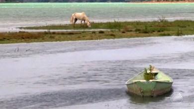 Photo of #Bahia: Nível da barragem de Sobradinho chega a 6,66% e preocupa produtores