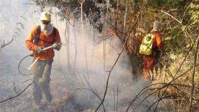 Photo of Chapada: Curso de controle e extinção de incêndios florestais será no mês de junho em Andaraí