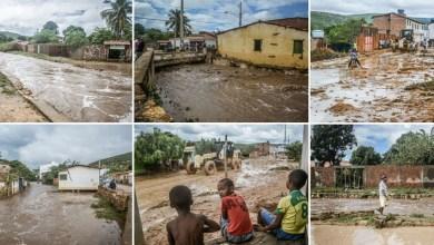 Photo of Chapada: Forte chuva causa transtornos aos moradores de Palmeiras; confira fotos e vídeos