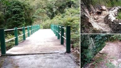 Photo of Chapada: Muros de contenção e trechos de trilhas são restaurados no Vale do Pati