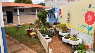 Photo of Chapada: Piatã terá cursos técnicos de agricultura orgânica e cafeicultura; saiba mais