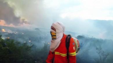 Photo of Chapada: Incêndios são extintos com atuação de brigadistas voluntários; chuva ajuda a controlar situações