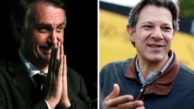 Photo of #Eleições2018: Haddad afirma que Bolsonaro não tem coragem de enfrentá-lo