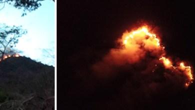 Photo of Chapada: Incêndio atinge biodiversidade em Utinga e prefeito atua para resolver situação