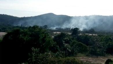 Photo of Chapada: Incêndio florestal atinge balneário do Rio Paraguaçu em Andaraí; brigadistas controlam chamas