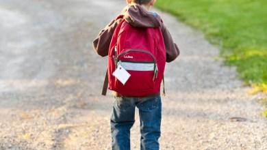 Photo of Transporte inadequado de material escolar afeta saúde de crianças e adolescentes