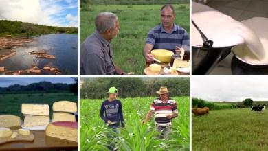 Photo of Chapada: Produção de alimentos finos em Morro do Chapéu é tema de reportagem do Globo Rural