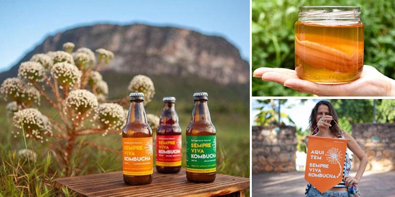 Refrigerante natural é produzido na Chapada Diamantina; a bebida é saudável, artesanal e cheia de sabor