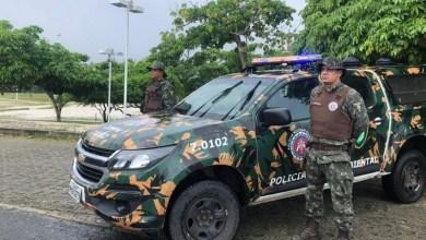 Photo of #Bahia: Polícia Ambiental dá dicas do que fazer ao encontrar um animal silvestre; confira aqui