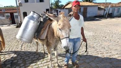 Photo of PAA Leite reforça alimentação saudável e geração de emprego e renda na Bahia