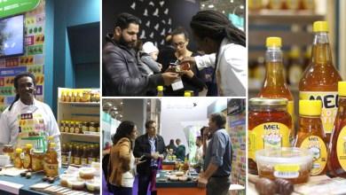 Photo of Maior feira de produtos sustentáveis da América Latina tem mel orgânico da Chapada Diamantina
