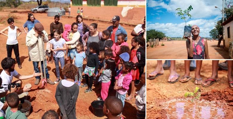 Photo of Chapada: Horto comunitário mobiliza ação de reflorestamento na comunidade Lagoa dos Patos em Palmeiras