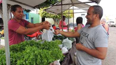 Photo of #Chapada: Agricultores familiares do Consórcio 'Chapada Forte' são beneficiados com ações que somam de R$7,7 milhões