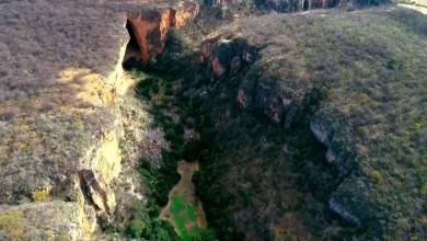 Photo of #Chapada: Morro do Chapéu é acionado pelo MP para implementar política de educação ambiental
