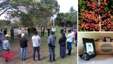 Photo of Chapada: Cooperativa da região apresenta caso de inovação na agricultura familiar durante evento em São Paulo