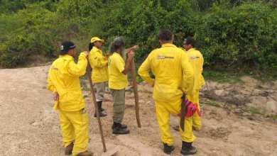 Photo of Chapada: Cifa instrui brigadistas voluntários em controle e extinção de incêndios florestais