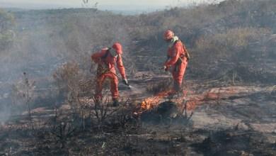 Photo of Governo estadual investe R$ 6,7 milhões em ações contra incêndios florestais na Bahia