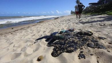 Photo of #Bahia: Manchas de óleo chegam a praias de Salvador; resíduos preocupam banhistas