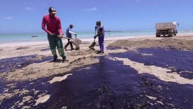 Photo of #Bahia: Ufba cria técnica para usar resíduos de óleo cru das praias em mistura para asfalto