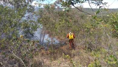 Photo of Incêndios florestais são combatidos em pelo menos três municípios da Chapada Diamantina
