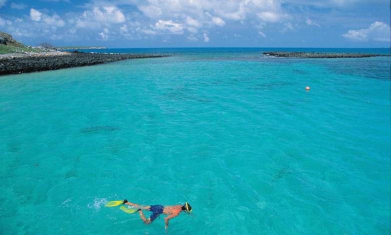 Photo of #Tragédia: Óleo cru começa a se aproximar do arquipélago de Abrolhos no litoral sul da Bahia
